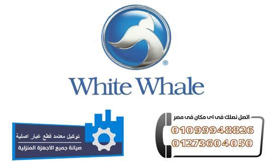 صيانة وايت ويل بالقاهرة