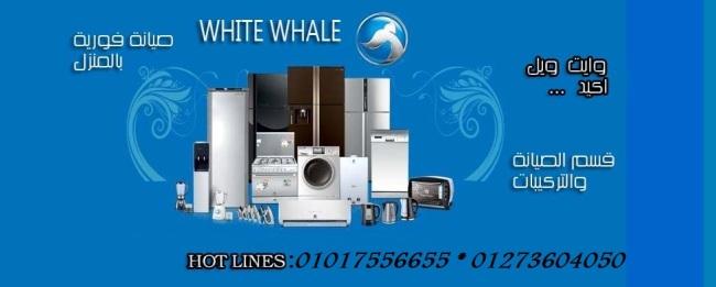 شركة وايت ويل للاجهزة الكهربائية